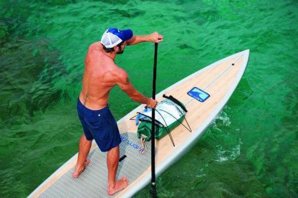 Save $15.00 on Paddleboarding