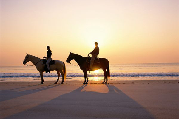 Free Horse Rides on the Beach <br> with Time Limited Coupon Offer